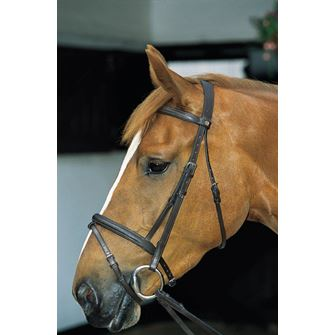 JHL Pro Flash Bridle with Reins