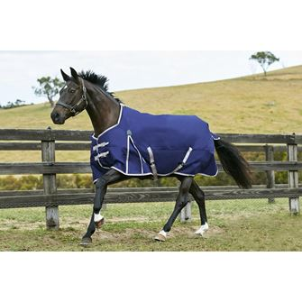 Weatherbeeta ComFiTec Essential Standard Neck Medium Turnout Rug