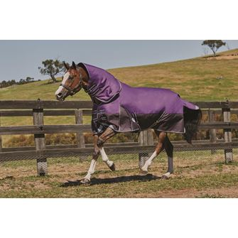 Weatherbeeta ComFitec Plus Dynamic Detach-A-Neck Medium Turnout Rug