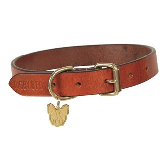 Shires Digby & Fox Flat Leather Dog Collar XS - L