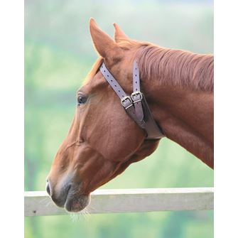 Shires Anti-Crib Collar